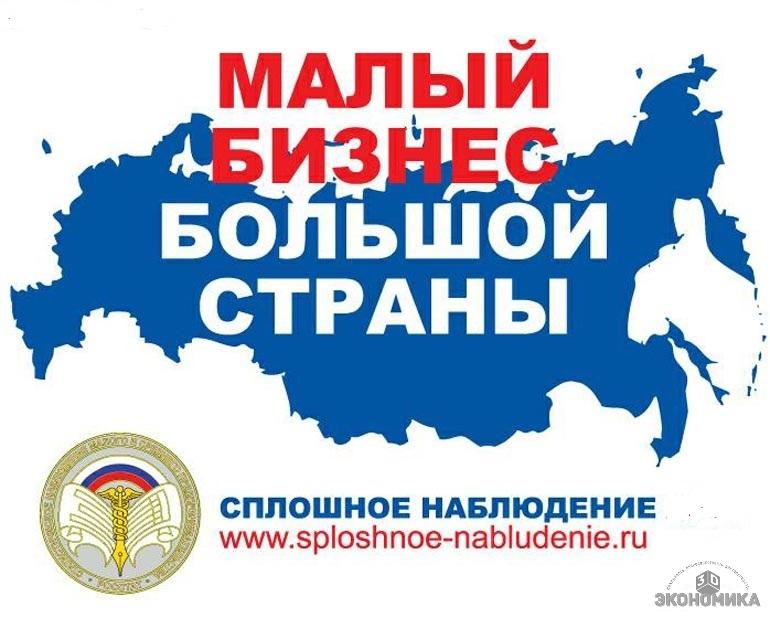Служба статистики оценит малый бизнес в России в 2015 году по его отчетам